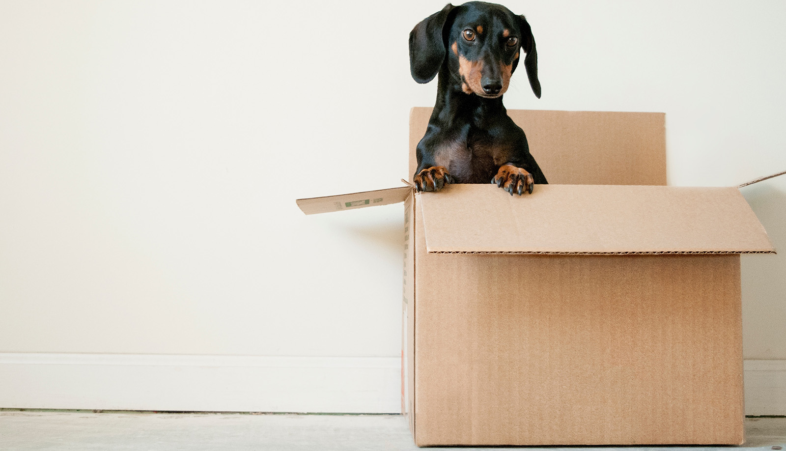 Four Signs You've Outgrown Your Current Home